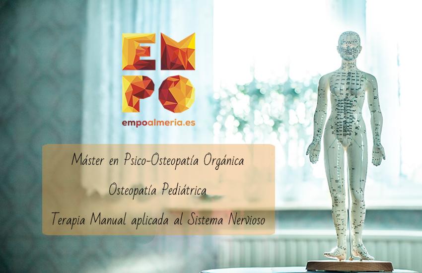 Maniquí anatomía con las formaciones de la Escuela de Osteopatía EMPO Almería